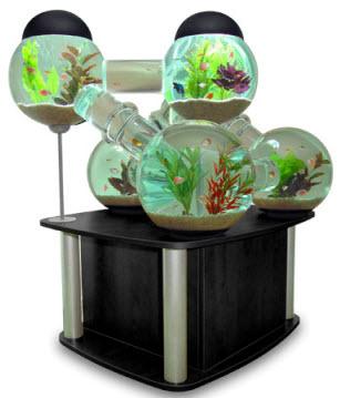 Aquarium de luxe