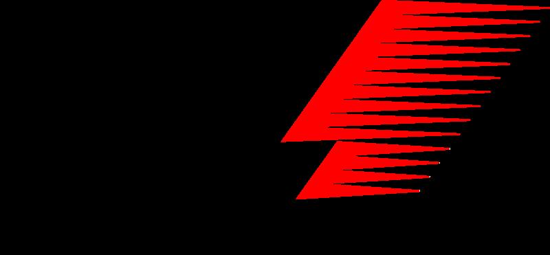 Pilote du Grand Prix 2009
