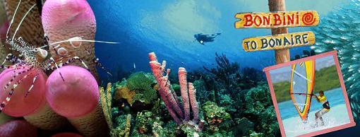 Bonaire antilles